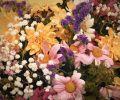 Od kwiatów do serca kobiety